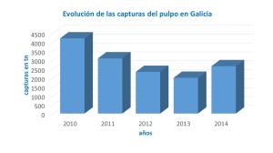 Evolución de las capturas del pulpo en Galicia