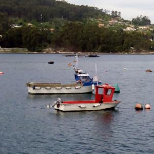 Embarcaciones empleadas en pesca artesanal