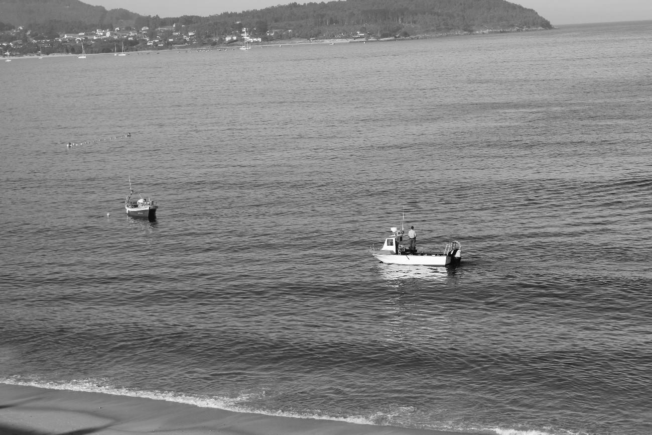 Barco de bajura