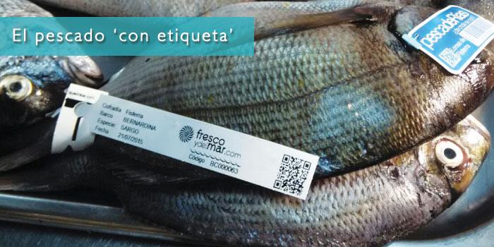 Etiqueta de trazabilidad de nuestro Marisco y Pescado