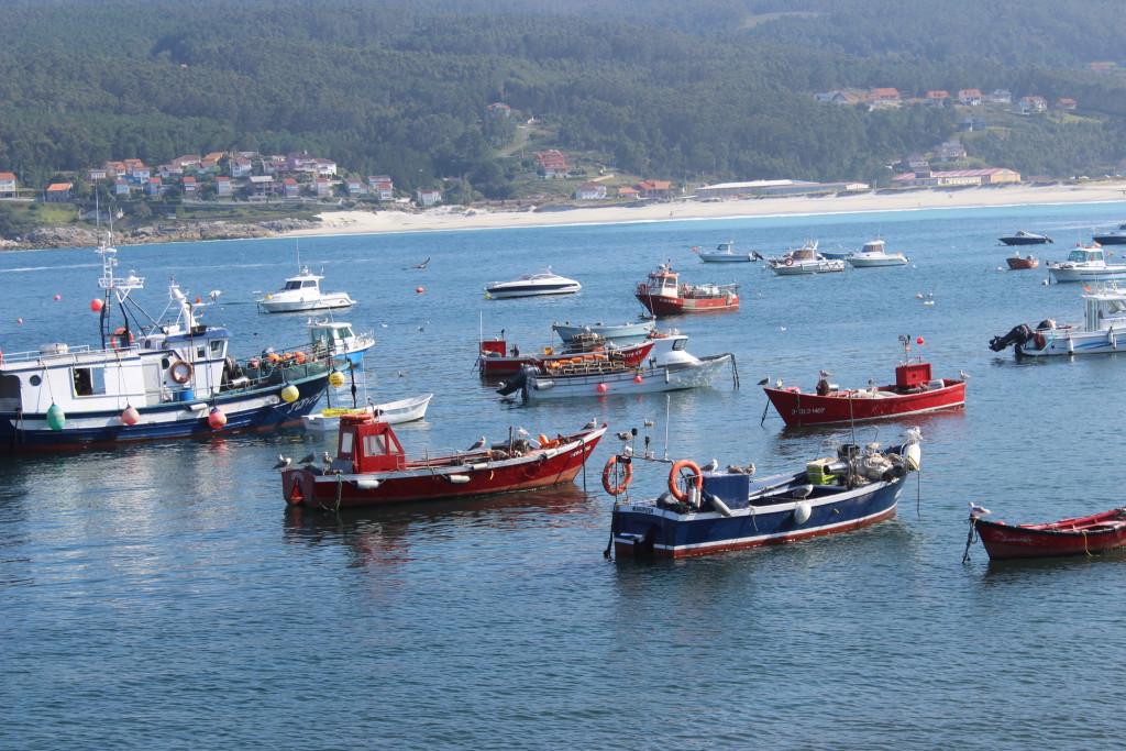 La pesca sostenible y artesanal
