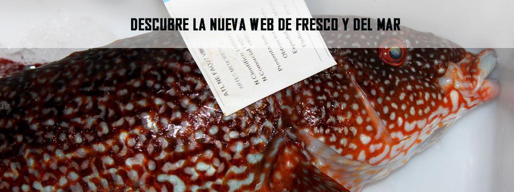 comprar marisco y pescado gallego