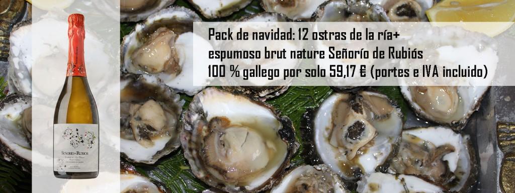 Ostras+espumoso brut nature 100 € gallego