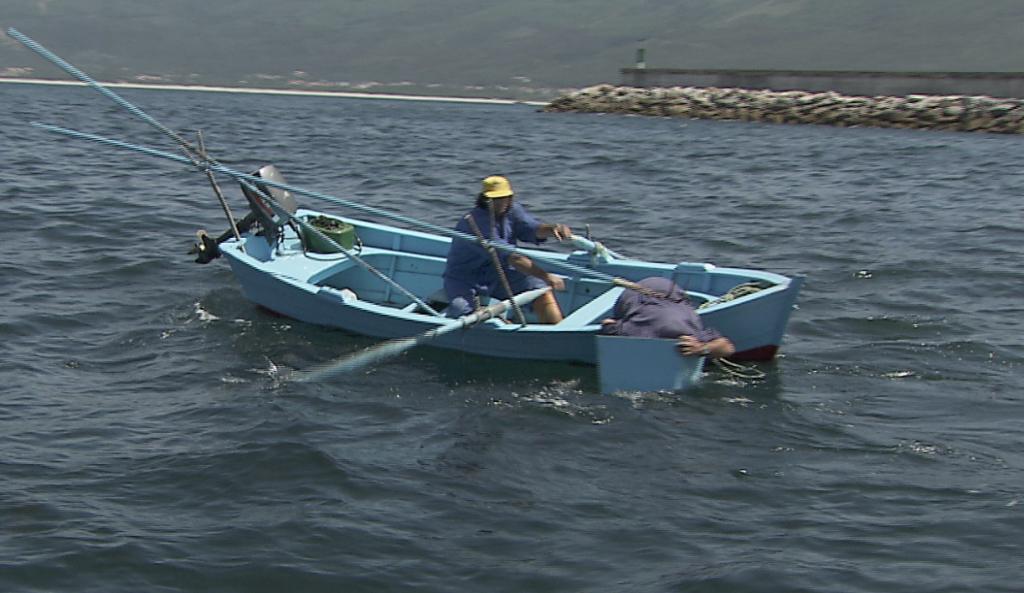 Pesca da centola con gancho - Foto: SAGA TV