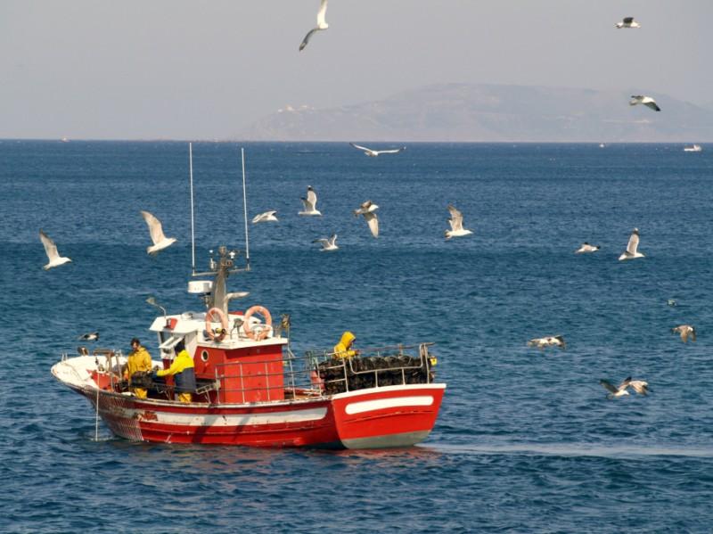 Pesca Artesanal y Sostenible Gallega