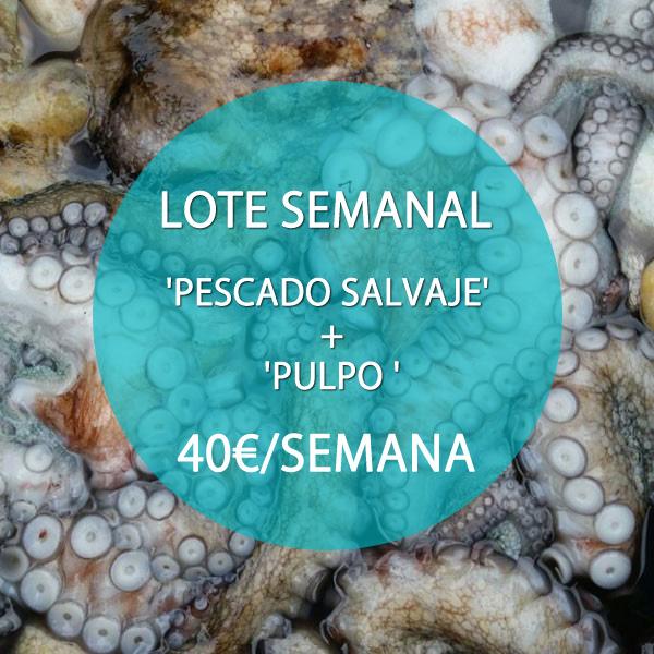 LOTE 1: 'PESCADO FRESCO SALVAJE' + 'PULPO GALLEGO (O SEPIA)' · 40 €/SEMANA