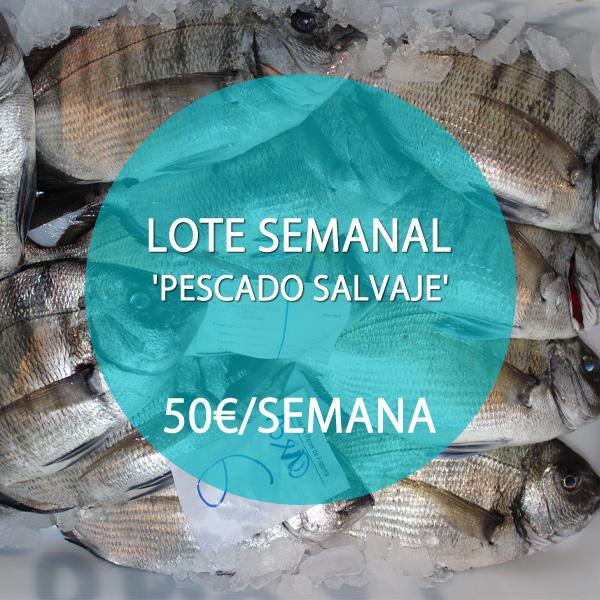 LOTE MARISCO Y PESCADO SALVAJE: 50 €/SEMANA