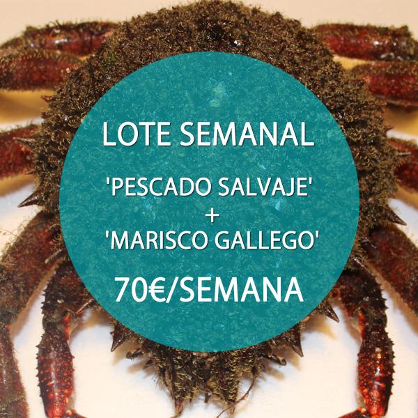 LOTE MARISCO Y PESCADO SALVAJE: 70 €/SEMANA