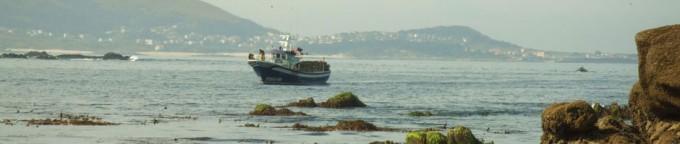Os Miñarzos, Reserva Marina iniciativa de los pescadores artesanales