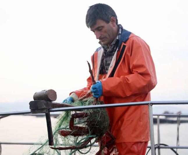 Pesca centolla con miños (Foto: Faro de Vigo)