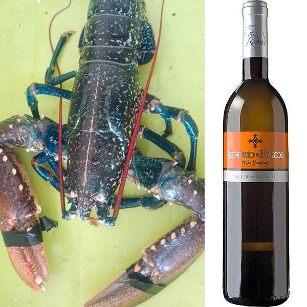 Nuevo lote de marisco gallego y vino albariño, en este caso el marisco es el bogavante