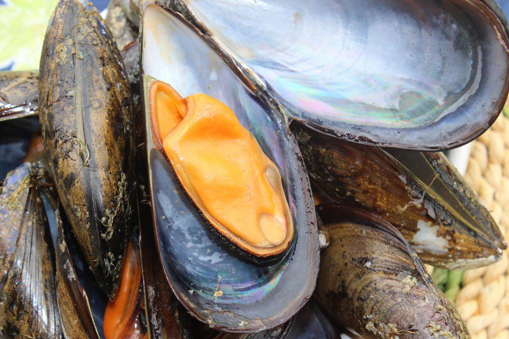 Marisco: Mejillones gallego