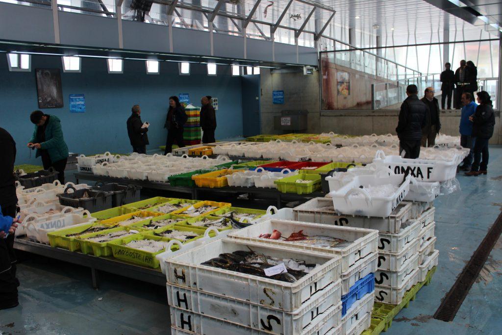 Lonja de pescado y marisco de Fisterra. Momentos antes de la subasta