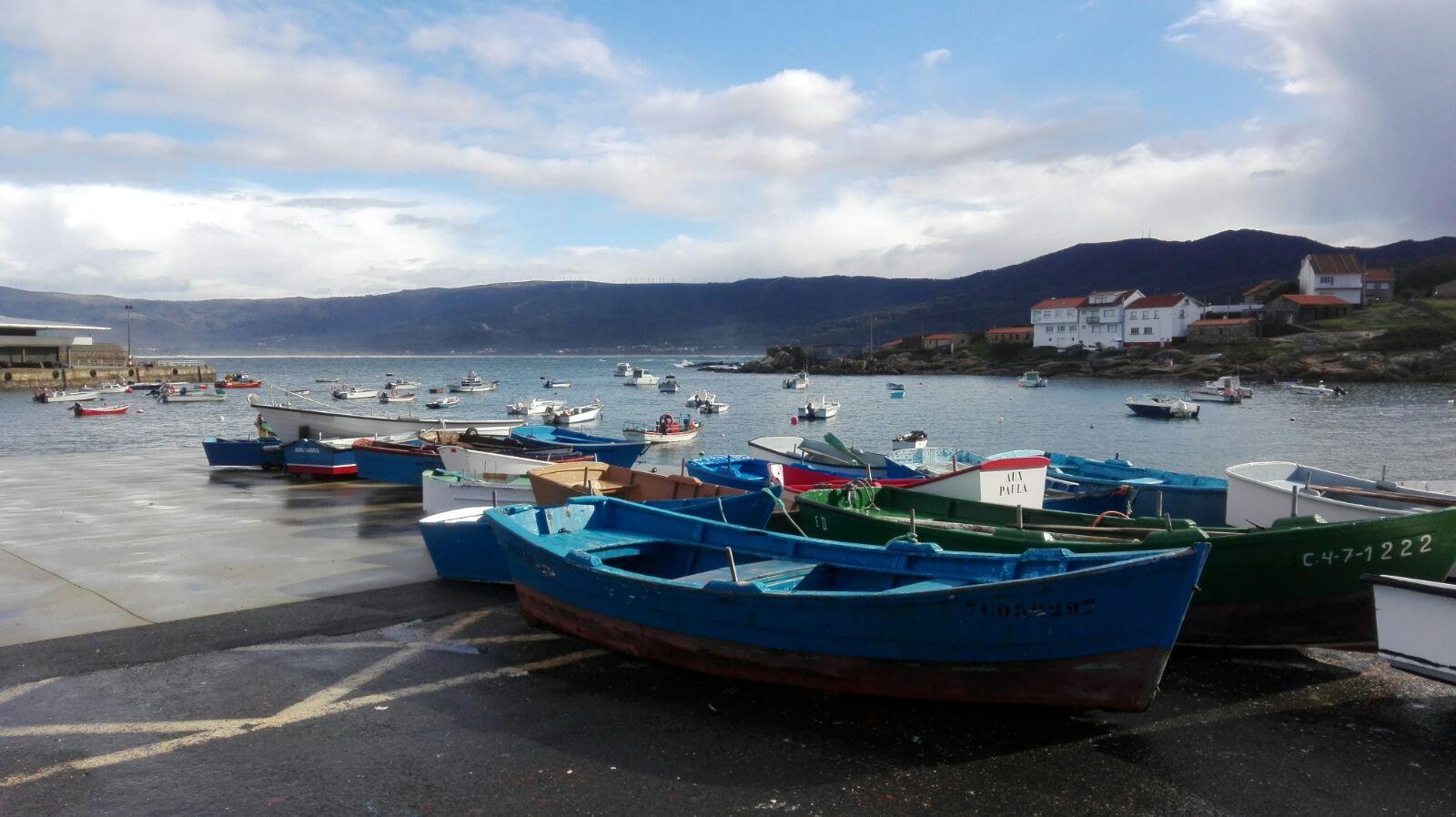 Pesca sostenible: urge implementar soluciones para la pesca artesanal