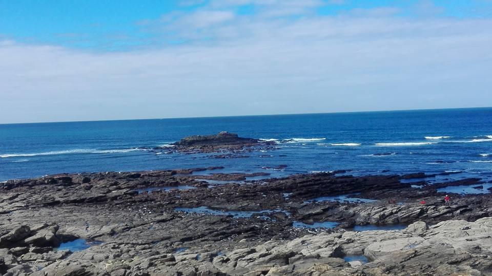 Mareas vivas: oportunidad de percebeiros y mariscadoras