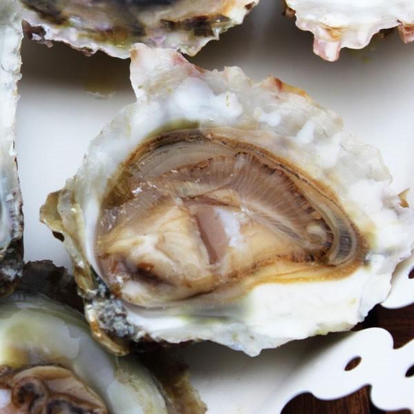 Comprar ostras gallegas online