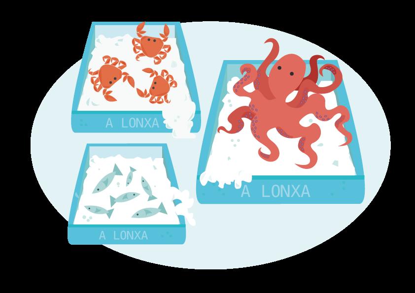Cajas de pescado y marisco gallego