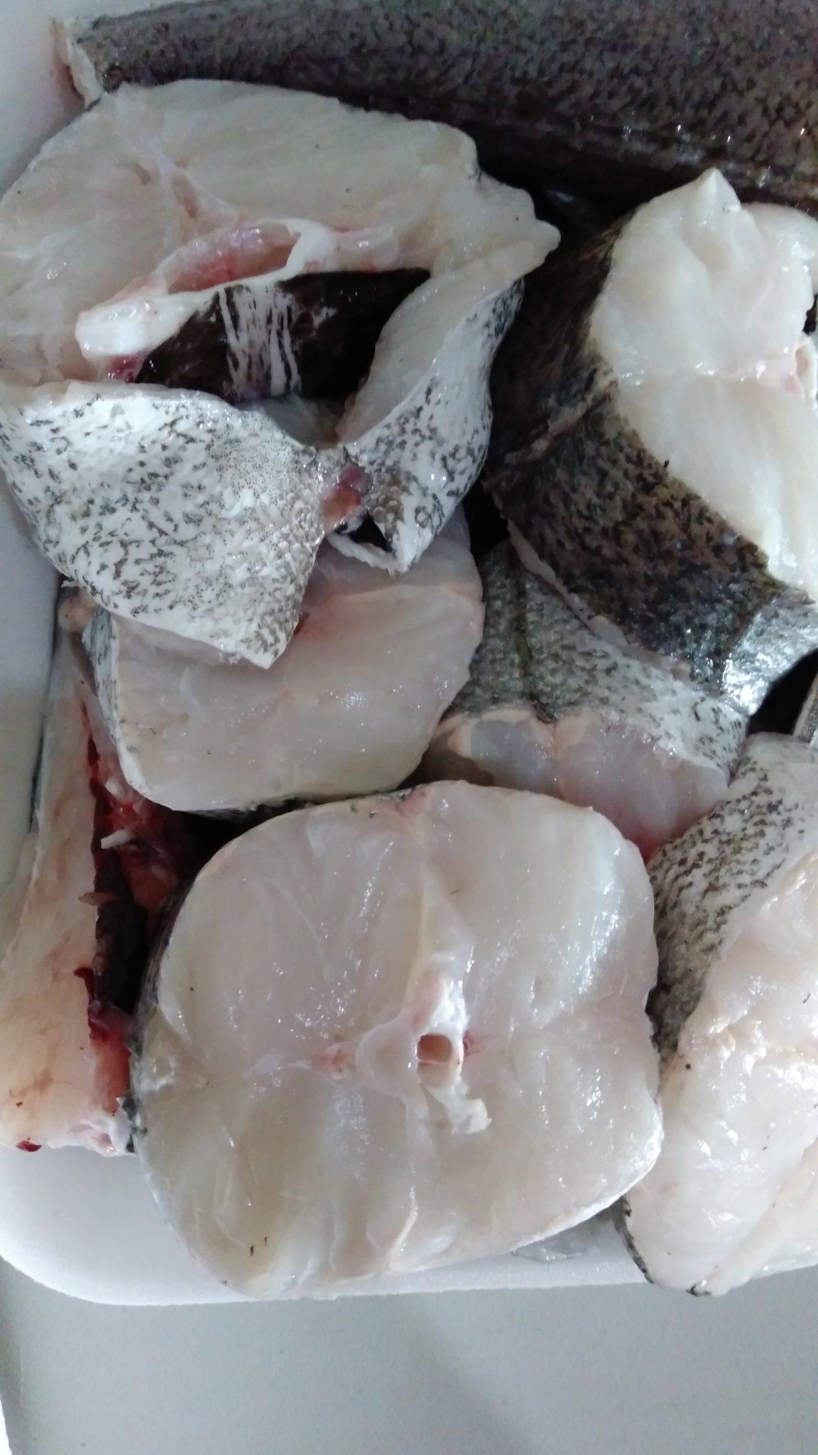 Merluza cortada para su envío, limpiada con agua de mar