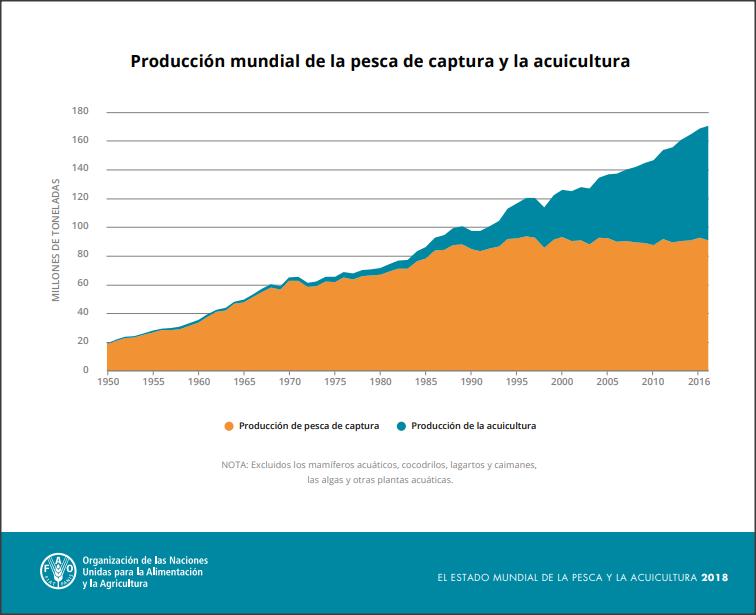 Evolución de la pesca y acuicultura