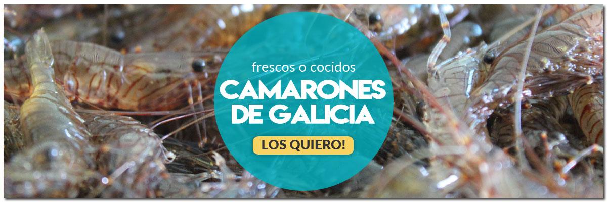 comprar-camarones-de-galicia-online