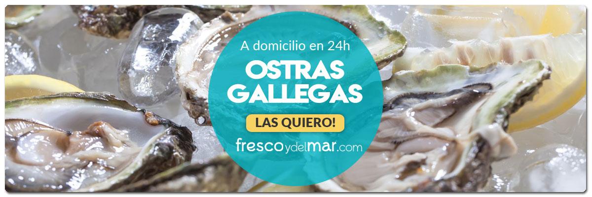 comprar-ostras-de-galicia